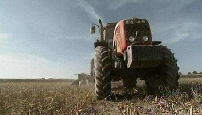 farm tractor_175030