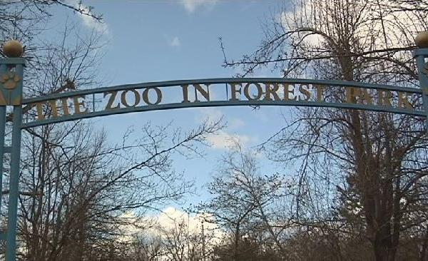 Zoo in Forest Park_176958