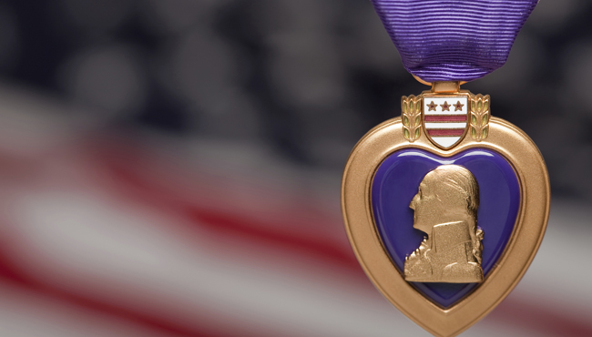 purple heart_325381