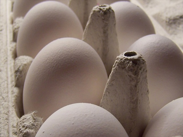 eggs_211465