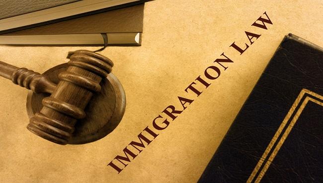 Legal series_404660