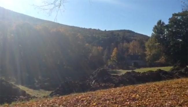 franklin-county-foliage-shelburne-falls_479025