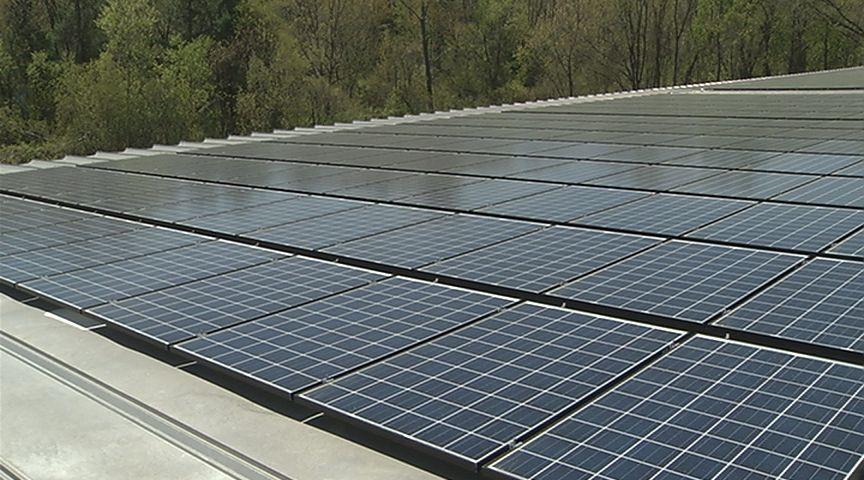 elong solar panels_611103