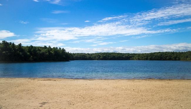 Walden Pond_262274