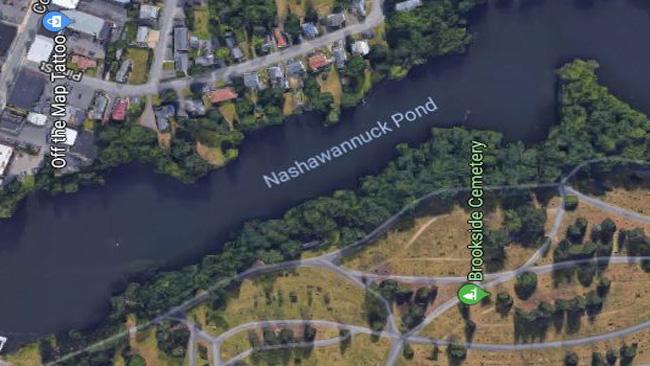 nash pond_794885