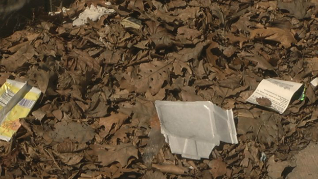 springfield illegal dumping cameras_1523306979214.jpg.jpg
