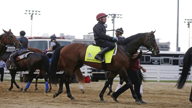 Kentucky Derby Horse Racing_1525528685414