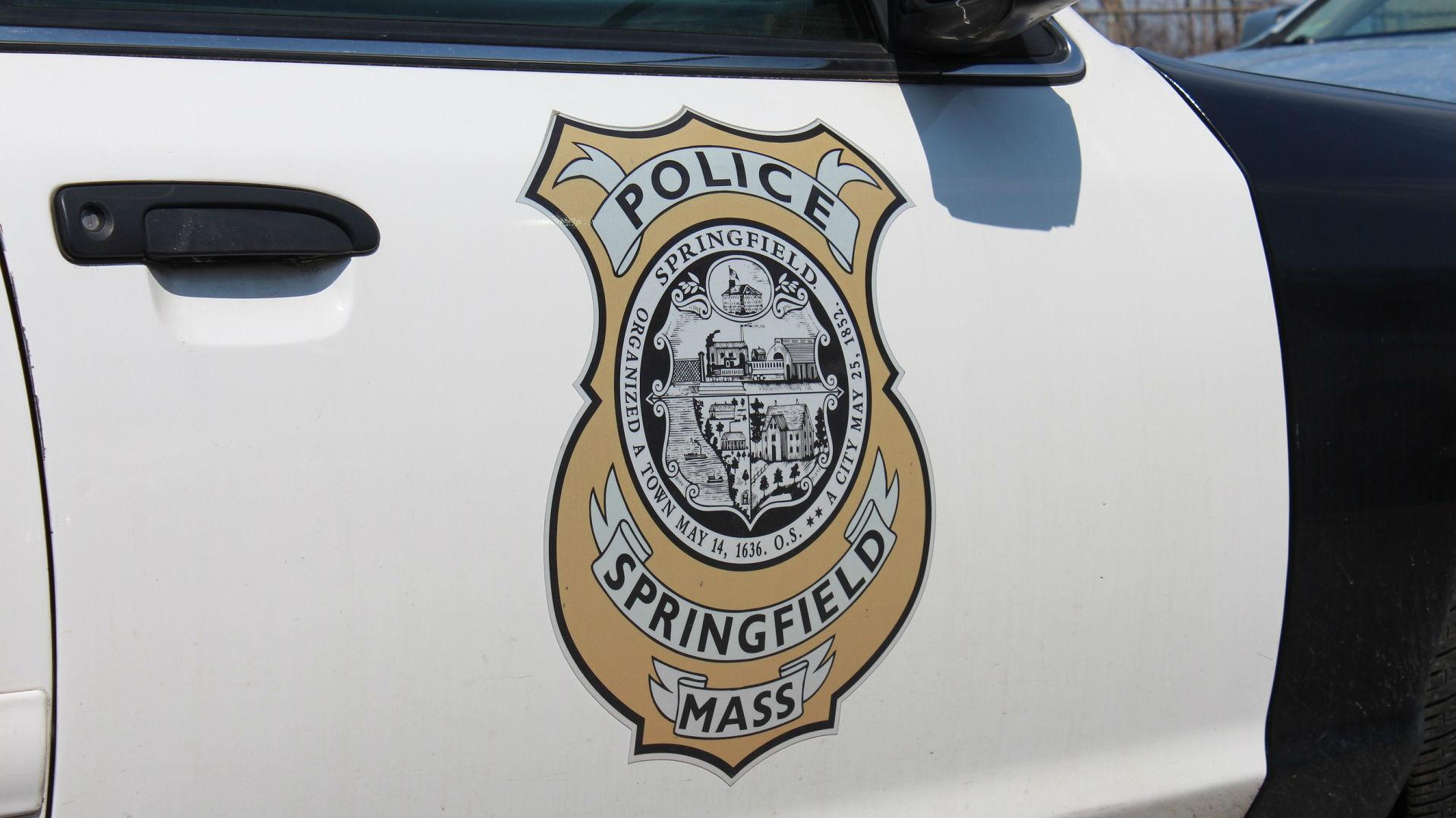 Springfield Police Car_1524529540474.jpg.jpg