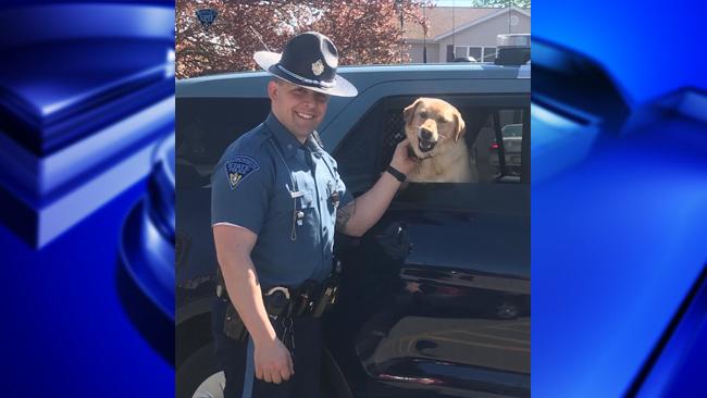trooper dog rescue_1525885092878.jpg.jpg