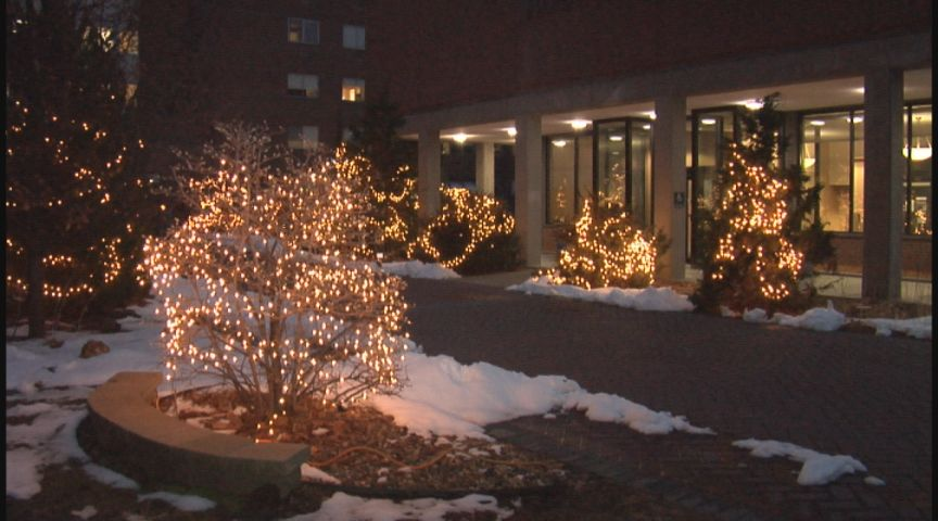 20th annual Trees of Love and Thanksgiving lighting ceremony