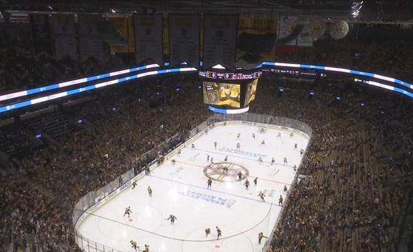 Bruins fans_1559008049841.jpg.jpg