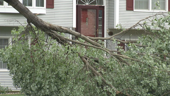 Parts of Hampden County affected by storm | WWLP