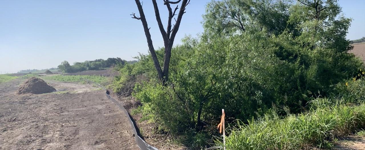 Judge OKs border-wall surveying on land adjacent to Santa Ana Wildlife Refuge