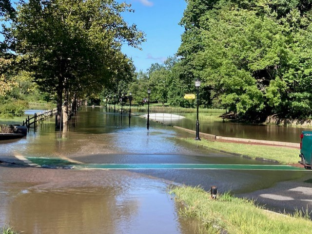 Flooding in Forest Park.