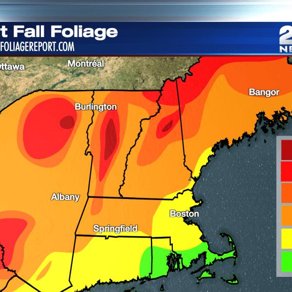 October 11 Fall Foliage Map